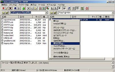 cgi1.jpg